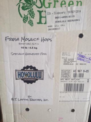 Fresh Mosaic Hops Honolulu Beerworks