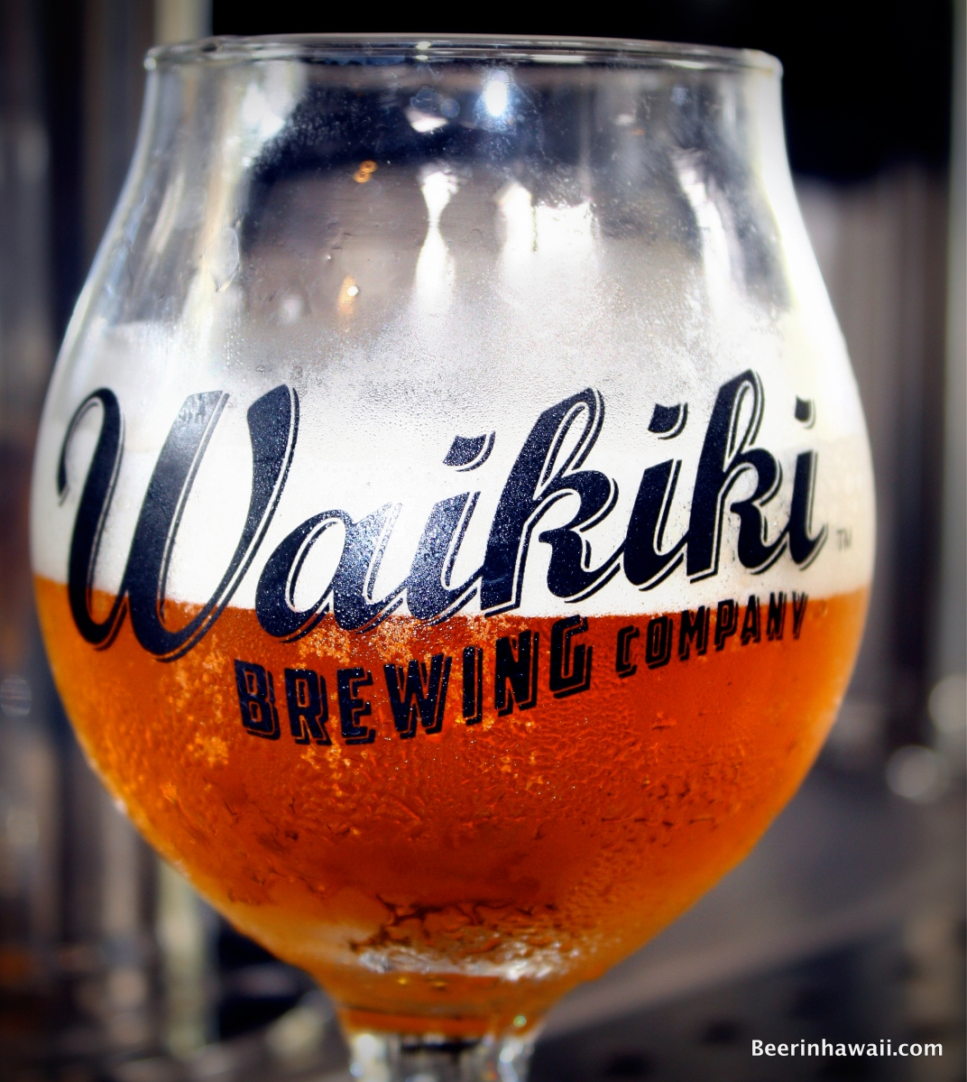 Waikiki Brewing Company Grand Opening Beer List