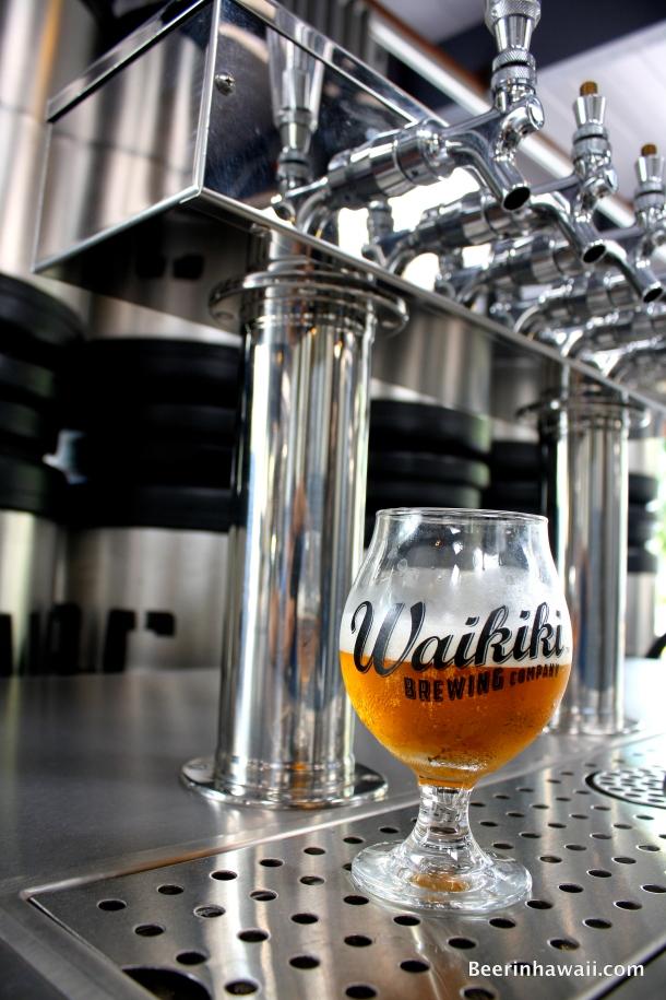 Waikiki Brewing Company Glass