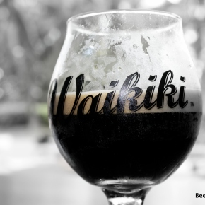 Waikiki Brewing Company Update