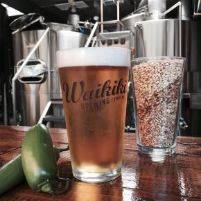 Tiny Bubbles: Hawaii Beer Reads for07/23/15