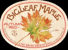 BigLeaf-Maple-Autumn-Red