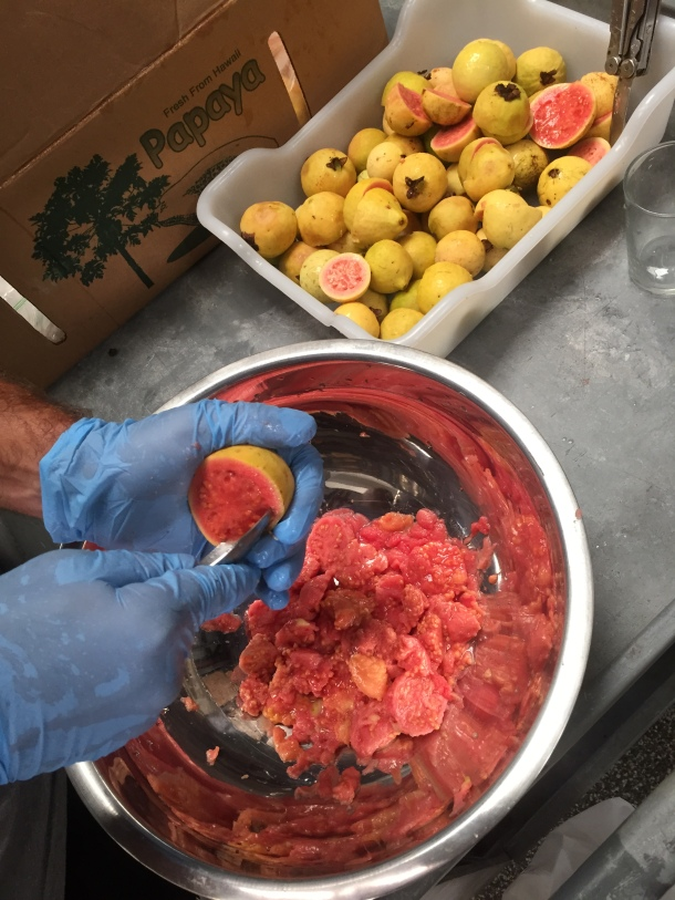 Lanikai Brewing Guava Fruit for Berliner Weisse