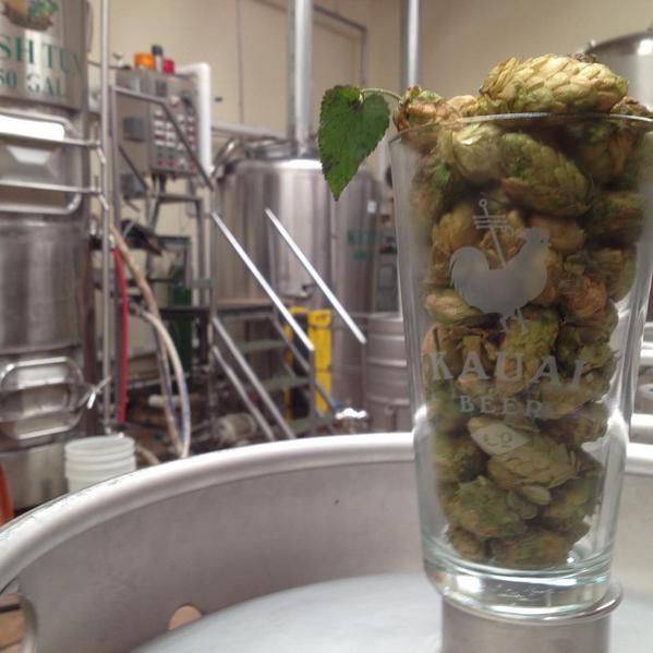 Kauai Beer Company Fresh Hop IPA