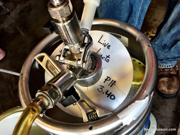 keg full of lactobacillus from breakside brewery in portland