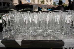 Great Waikiki Beer Festival 2016 (2 of 62)